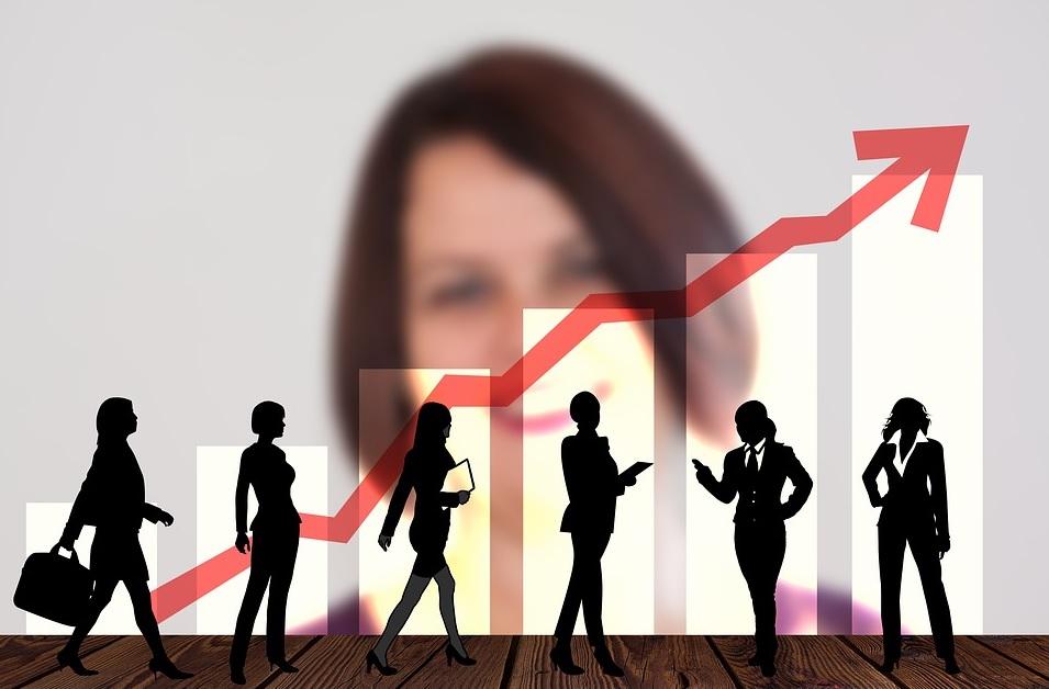 servicios profesionales en ingenierias, arquitecturas, finanzas